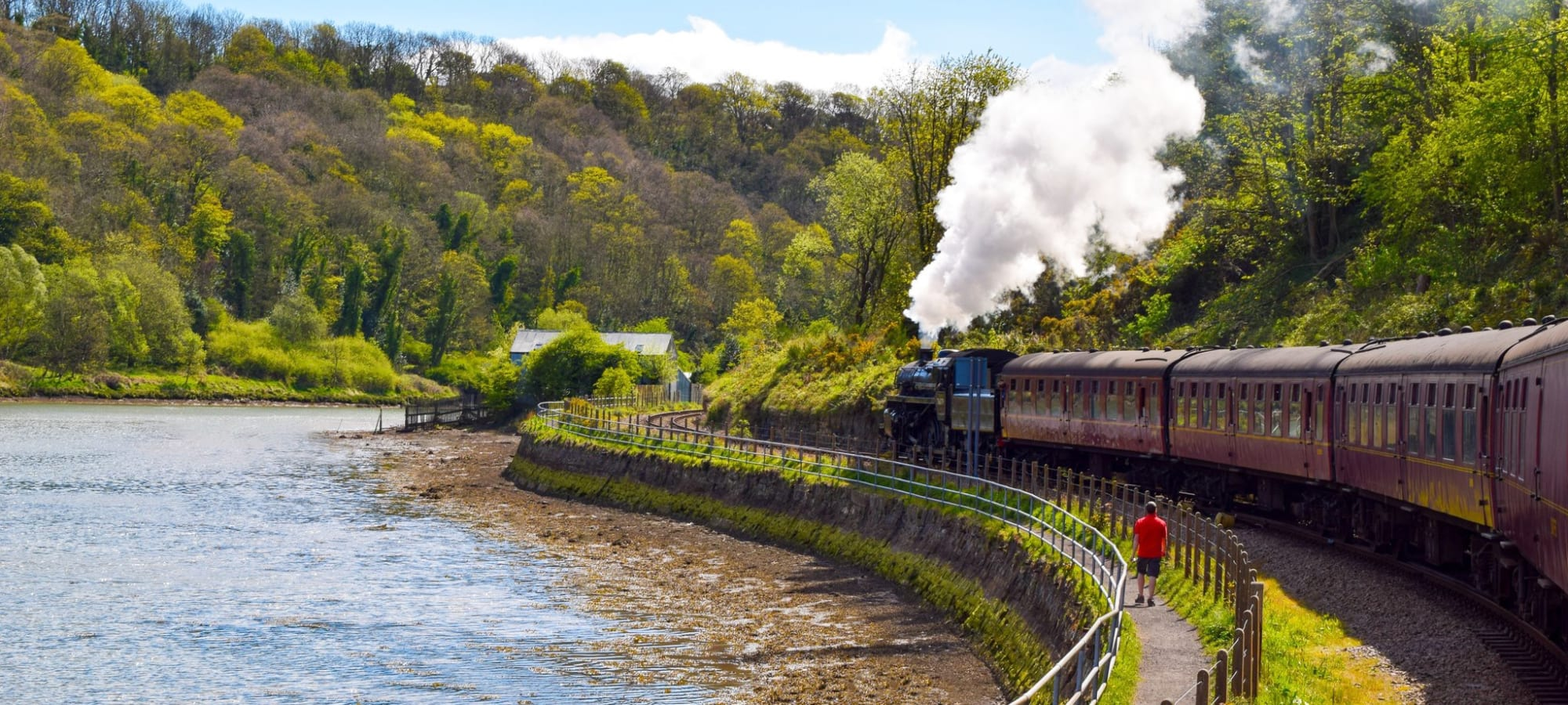 Local residents can save 50% off North Yorkshire Moors Railway